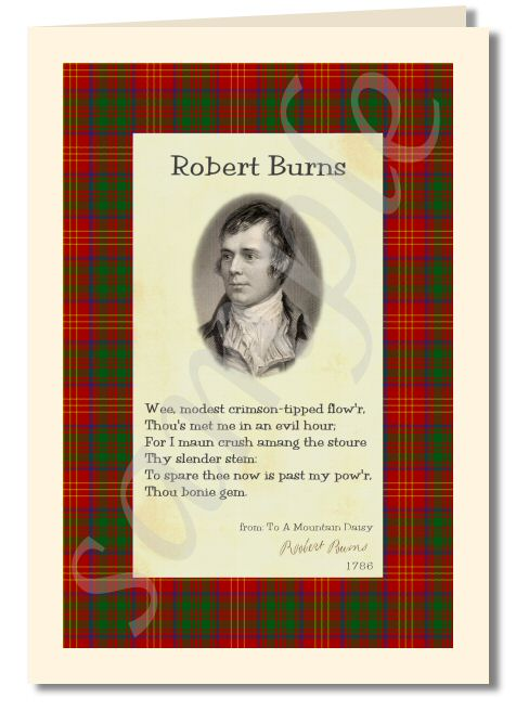 Robert Burns - extract from to a mountain daisy greeting card